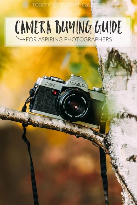 camera buying guide | beginner photographers | best camera | travel photography @roamtheamericas