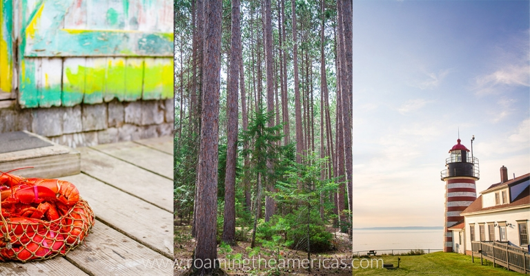 Images of Maine - lobster, lighthouse, pine trees