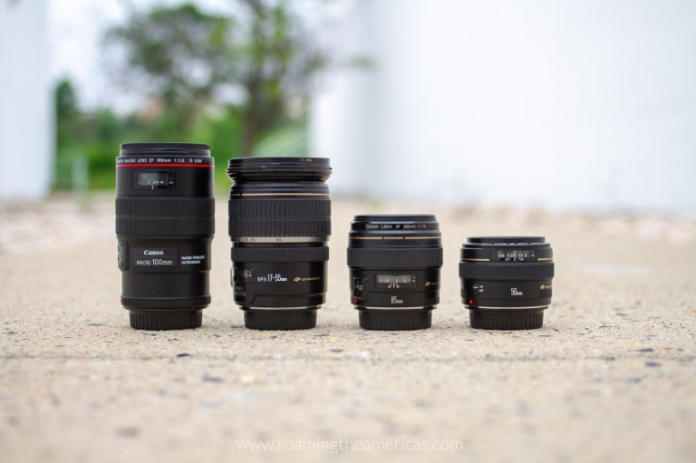Camera lenses for travel - Canon 100 mm macro lens, Canon EF-S 17-55 zoom lens, Canon 85 mm lens, Canon 50 mm lens on a sidewalks with trees in the background
