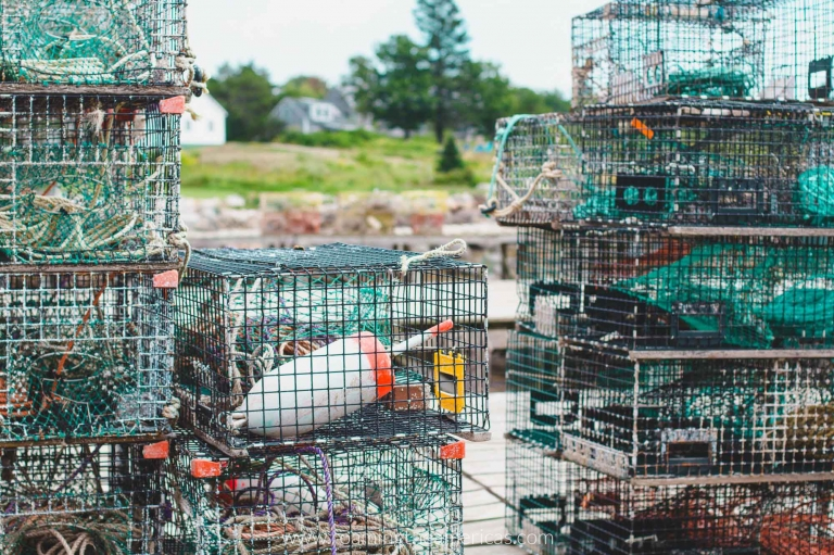 Lobster traps on the wharf in Maine