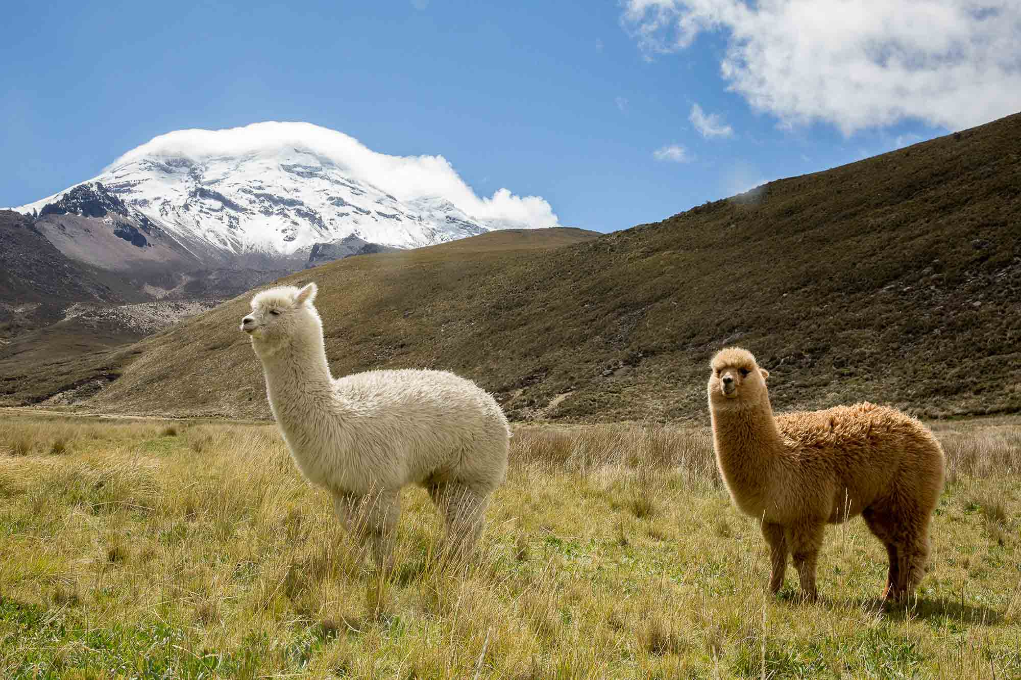 4 Ecuador Destinations That Will Make You Forget About the Galápagos