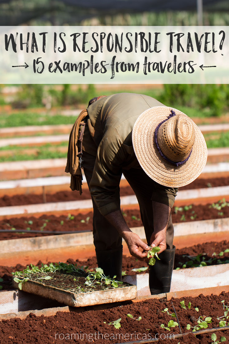 Get ready for the International Year of Sustainable Travel in 2017 as travelers from around the world share their favorite responsible travel stories and experiences @roamtheamericas