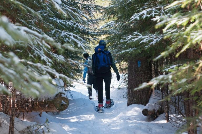 snowshoeing through the woods in Maine in winter