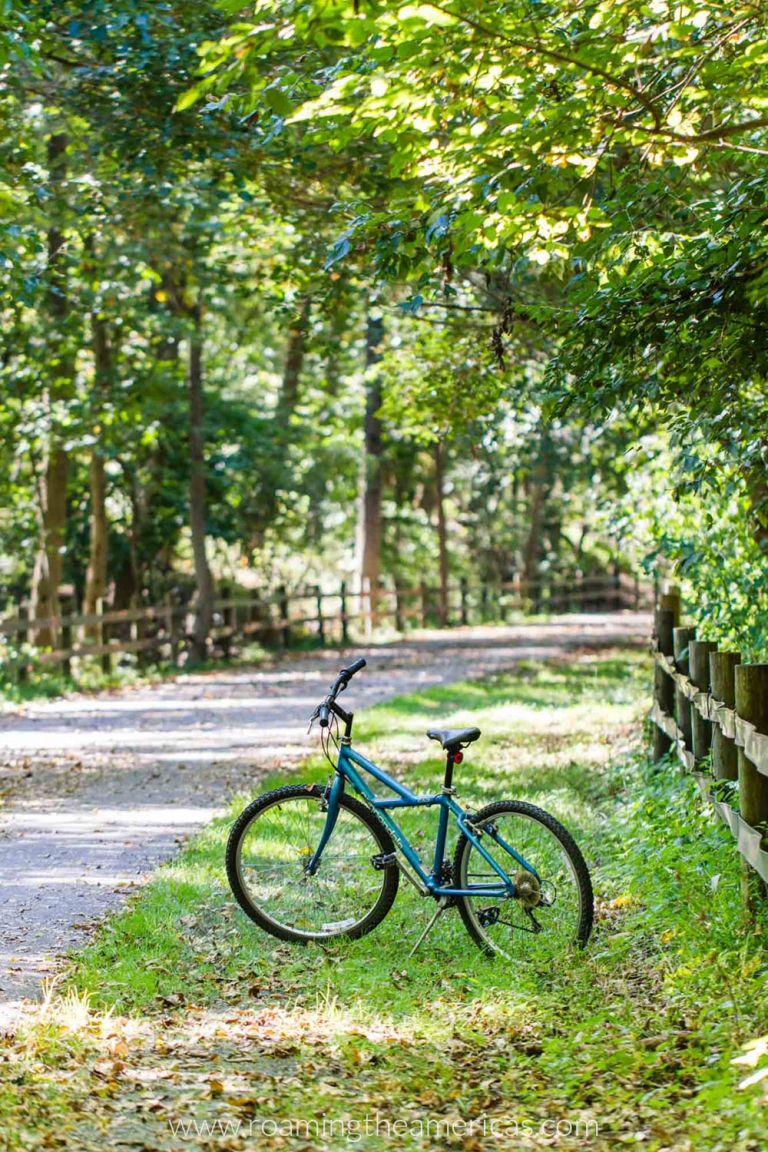 Bike beside the Schuylkill River Bike Trail in Valley Forge National Park