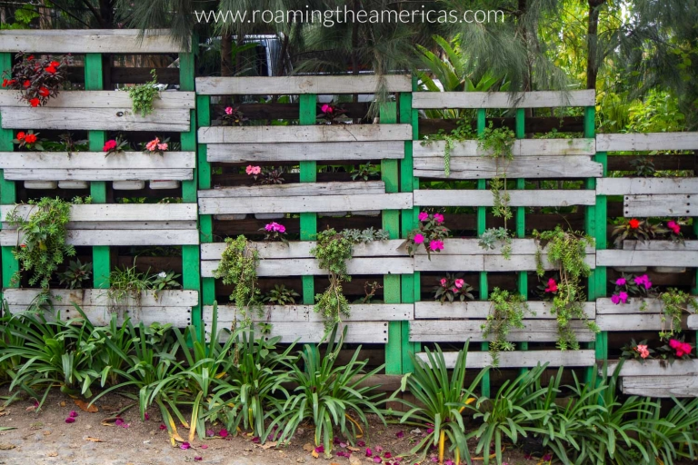 Wooden planters with colorful flowers beside a street in San Cristóbal El Alto, Guatemala