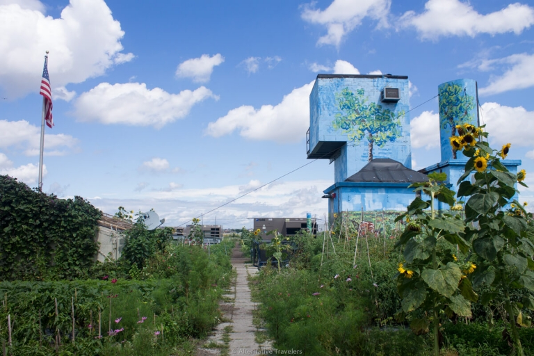 Brooklyn Grange Rooftop Farm, Long Island City in Queens
