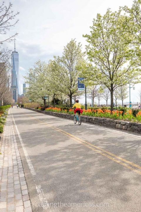 Bicyclist riding down the Hudson River Greenway, a bike path in New York City, with the World Trade Center in the background