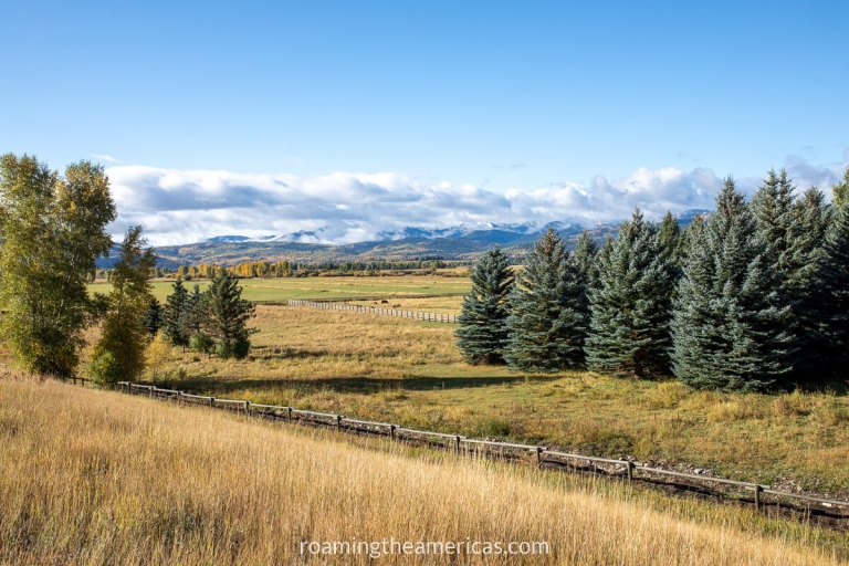 View from the Jackson Hole Community bike path of a field, evergreen trees, and mountains in the distant background